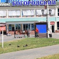 Ногинск :: Владимир  Зотов