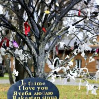 Дерево любви :: Ксения Базарова
