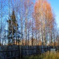 Окраина :: Катя Бокова