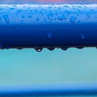 После дождя :: Caba Nova