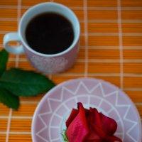 роза :: Анастасия Садовская