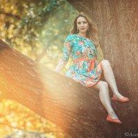На дереве :: Алена Шпинатова