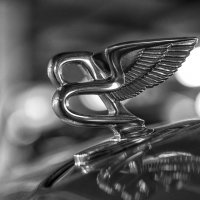 Bentley :: Владимир Горубин