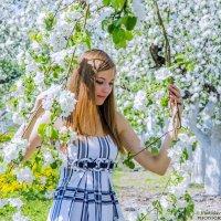 в цветущих садах и нежных красках мая :: Vladislav Rogalev