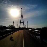 Солнце над мостом. Тарту. :: Наталья Левина