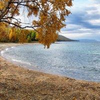 Самая золотая осень* :: Павел Федоров