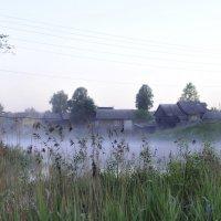 утро в тумане :: Екатерина Куликова