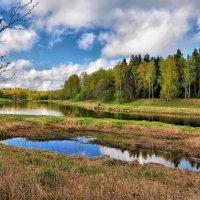 Речной пейзаж :: Андрей Куприянов