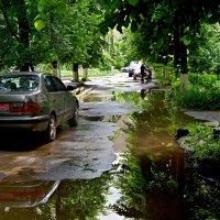 после дождя.. :: юрий иванов