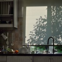 Да ну её, посуду... :: Ирина Данилова