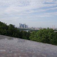 Воробьёвы горы :: Кирилл Николенко