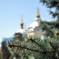 Возле церкви :: Илья Воронков