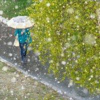 Зима недаром злится... :: Павел Белоус