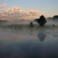 Утро туманное... :: Андрей Войцехов