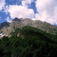 Леса и горы. :: ФотоЛюбка *