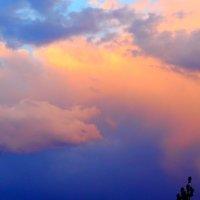 Когда кто-то показывает пальцем на небо, только дурак смотрит на палец... :: Юрий Гайворонский