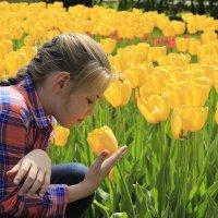 весна :: Оксана Безель