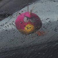 ...плохая погода... :: Ольга Нарышкова