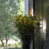 букет на старом окне :: Ольга Рывина