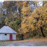 Осень. :: Борис Койнов