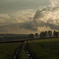 После дождя :: Вадим Губин