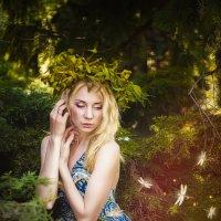 Волшебный лес :: Svetlana Gordeeva