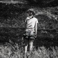 одиноко :: Ежи Сваровский