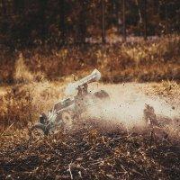 Мягкое приземление... :: Геннадий Калюжный