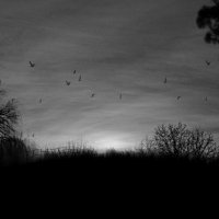 Вечерний хутор :: Динар Зиганшин