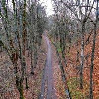 Осень в парке :: Yuriy V