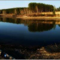 Весна в этом году затянулась до июня в Сибири :: Павел Гусев