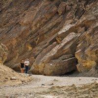 Золотой каньон (Калифорния) :: Юрий Матвеев