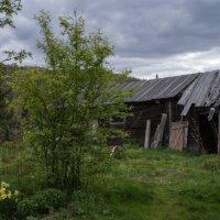 Деревня :: Марина Чернова