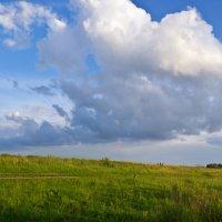 Поле, небо :: Александра Будникова
