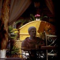 Завтрак с философом... :: Наталья Осипова(Копраненкова)