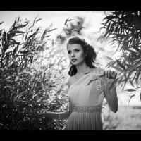 День, ночь, все равно - черное-белое кино... :: Сергей Пилтник