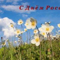 С Днём России!!!! :: Наталья Юрова