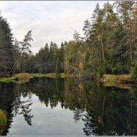 Река Петух :: Vadim WadimS67