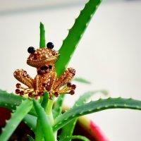 Царевна лягушка :: Ксения Базарова