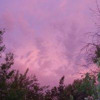 закат :: Юлия Тарасова