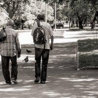 диалоги о вечном :: Николай Голубков
