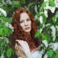 Лена :: Аня Пименова