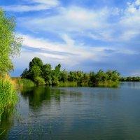 Озеро :: Aleksey Litovchenko