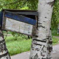 сервис в парке :: Валерия Матикайнен