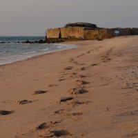 я готов целовАть песок, по которому ты ходила :: Ирина Зайцева