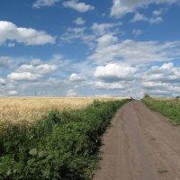 Дорога в облака :: Алла Рыженко
