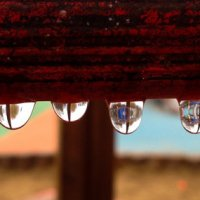 Прошёл дождь... :: Caba Nova
