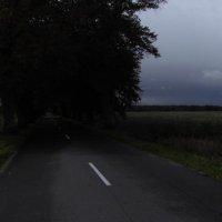 Калининградские дороги :: Михаил ИСАЕВ