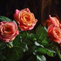 Нежность ароматных роз... :: Татьяна Кретова