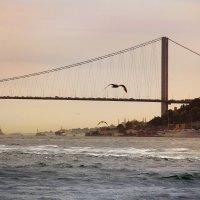 Bosphorus :: Katarina Guz`
